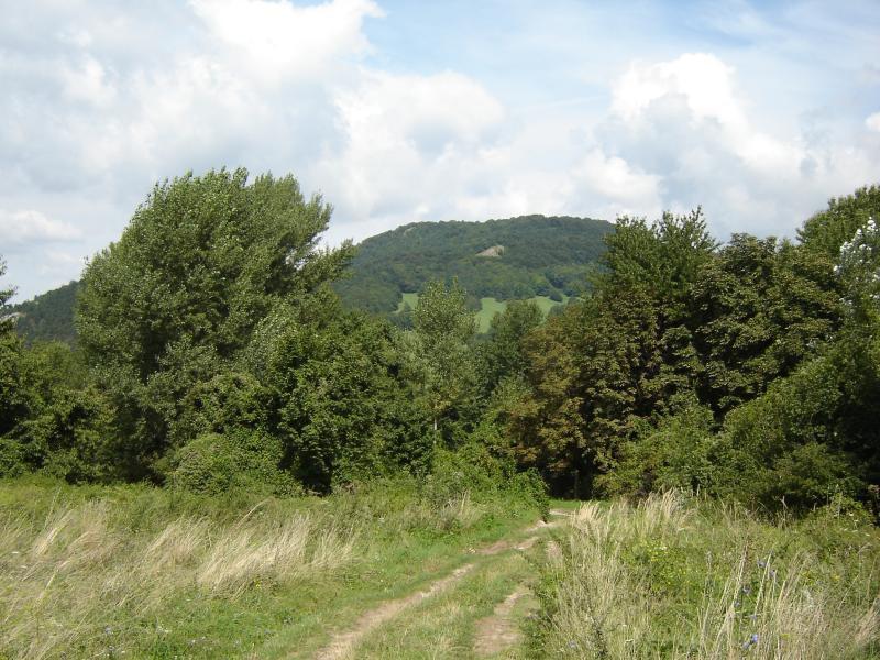 Slovensko, Záhorie, Alternatívna stena